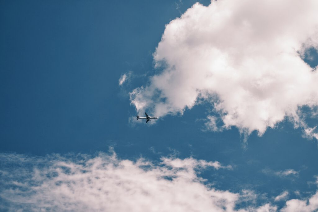 NOIZEZZ Fly